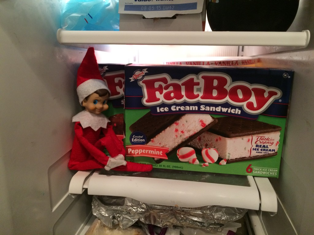 elf on the shelf 14