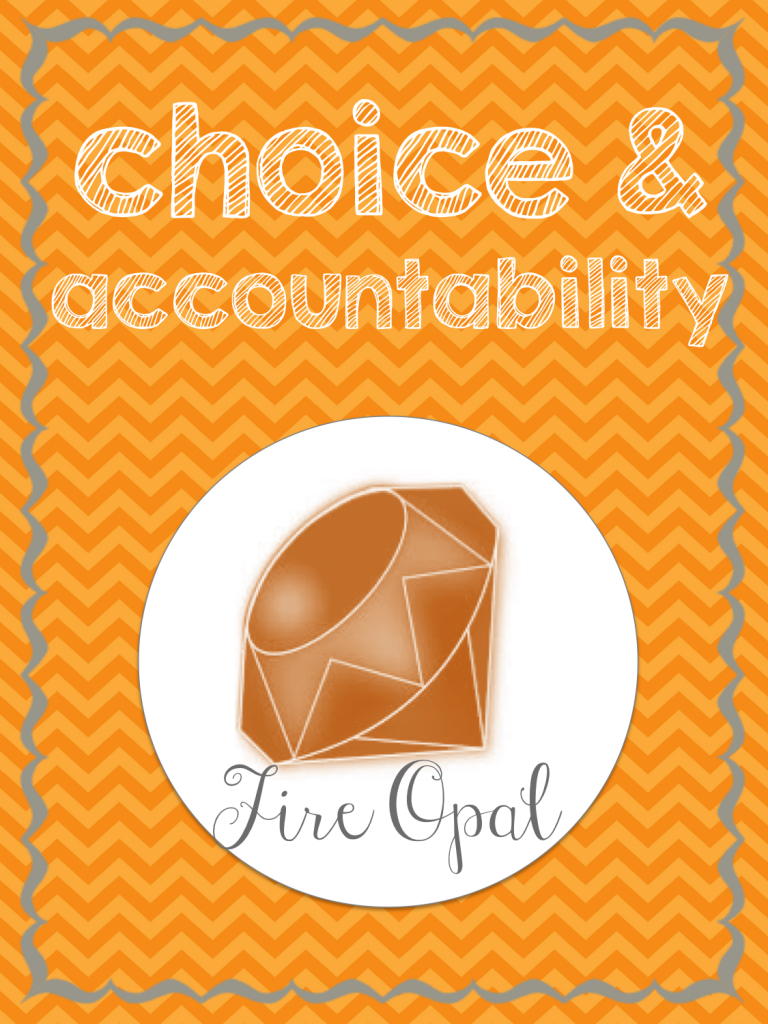choice accountability