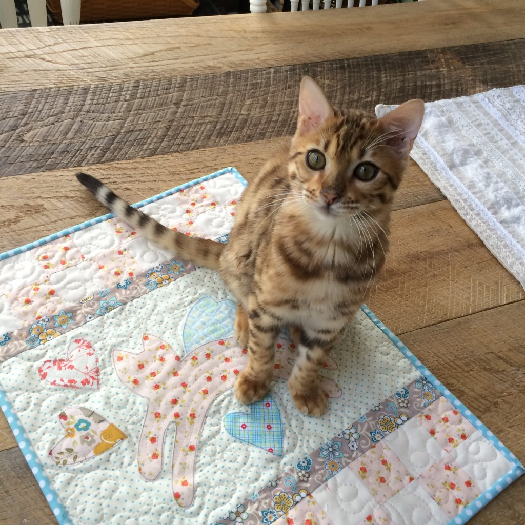 mini kitty quilt 5