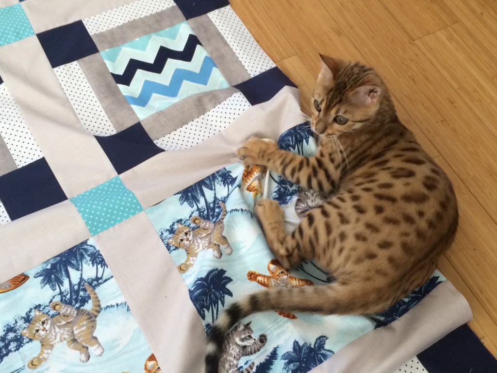 surfing cats quilt 17