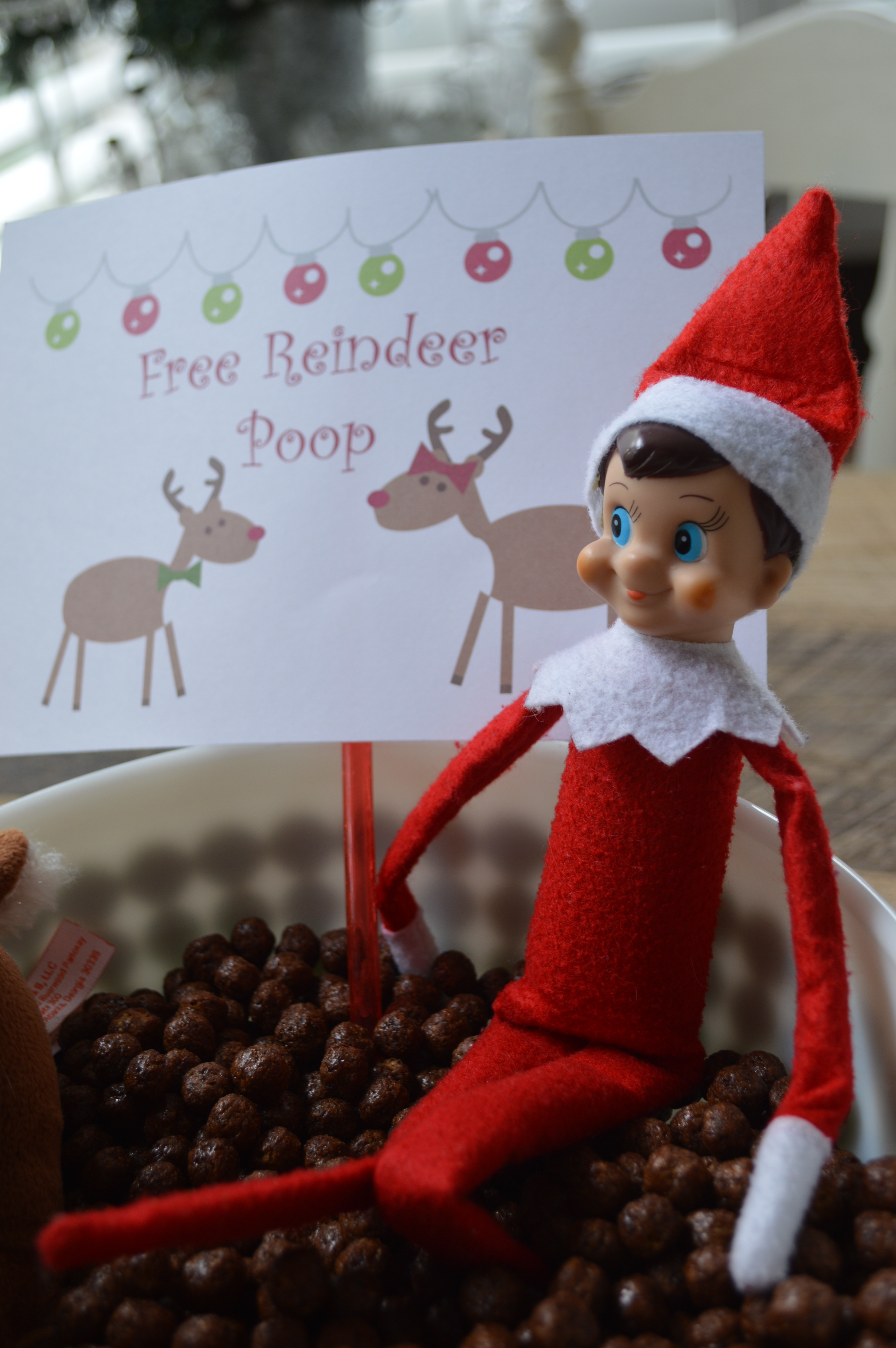 Fun With Richie Our Elf On The Shelf Christmas 2014